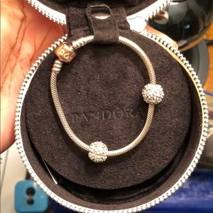 Pandora Bracelet with Daisy Clips
